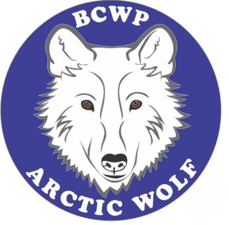 Wildlife Ranger's Pin Program, arctic wolf,